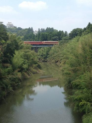 竹林在夷隅河的兩邊接近