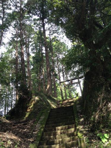在鄉村的小神社